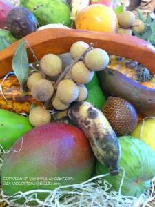 Rohvolotion 2015 Berlin - frische früchte, ayurveggie